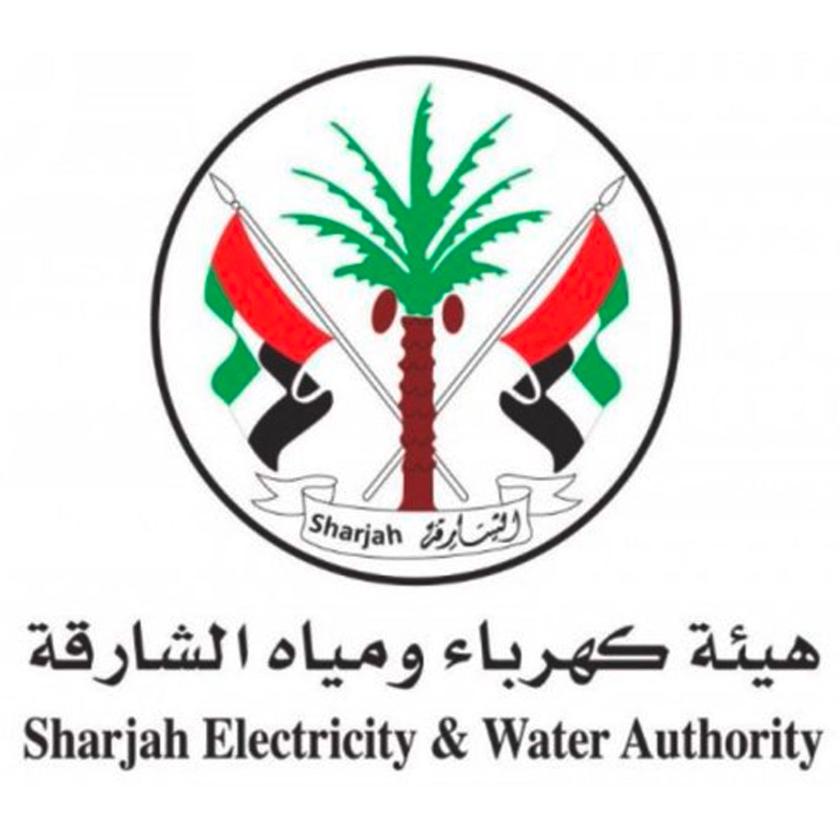 Sharjah Electricity: SCAM's Institutional Customer